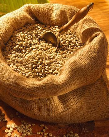 rohe-espressobohnen-zum-selbstrosten-5-x-500-g
